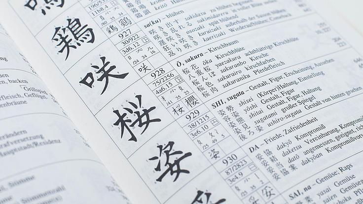 Nachaufnahme eines geöffneten Wörterbuches mit japanischen Schriftzeichen, dem Wort in arabischen Buchstaben und deutscher Übersetzung.