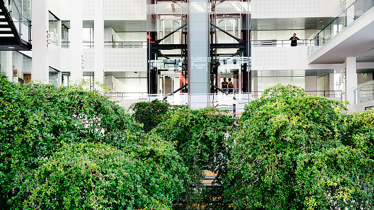 Innenhof der Universität Dänemark mit grünen Bäumen und gläserenen Aufzügen.