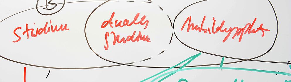 Tafel mit Skizzen zum dualen Studium