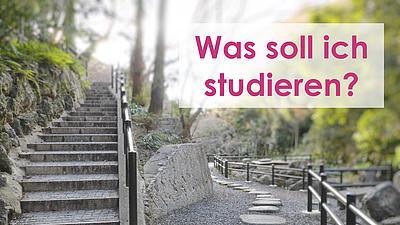 Eine Steintreppe und ein Weg im Wald