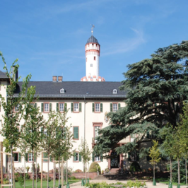 Ein Schloss in Bad Homburg.