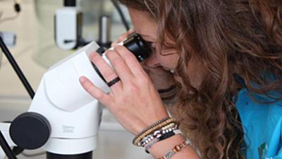 Studentin untersucht etwas mit einem Mikroskop