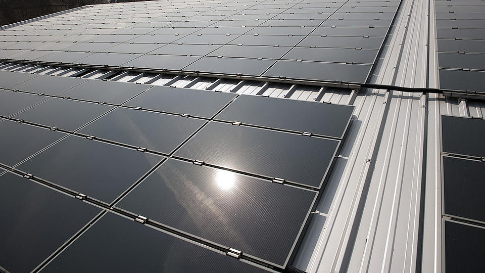 In einer großen Photovoltaikanlage spiegelt sich die Sonne. Im Hintergrund sind Bäume erkennbar.