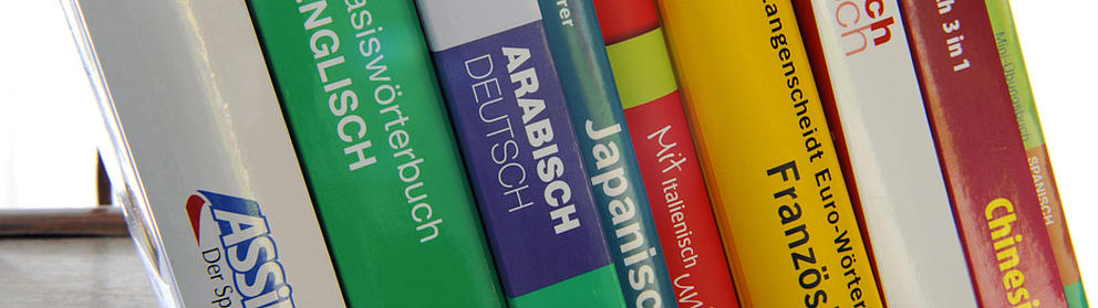 Mehrere Wörterbücher stehen schräg nebeneinander in einer Reihe.