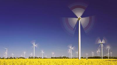 Auf einem Feld stehen viele Windräder.