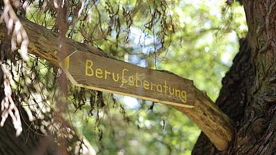 """Holzschild mit der Aufschrift """"Berufsberatung"""" an einem Baum"""