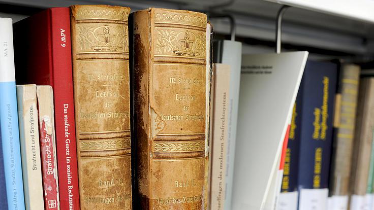 Verschiedene Bücher stehen in einem Regal.