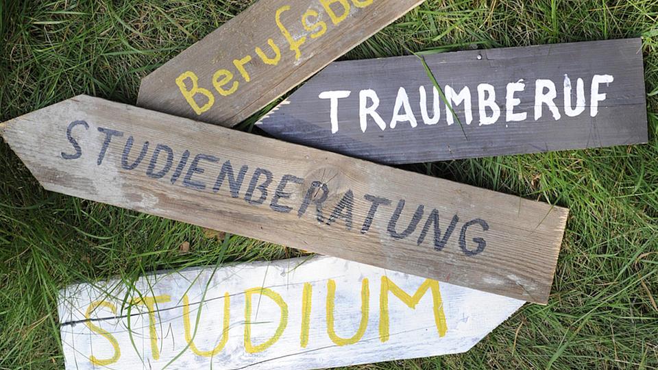 Auf einer Rasenfläche liegen verschiedene Holzwegweisen.