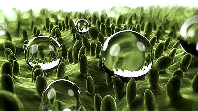 Unter einem Mikroskop ist ein abperlender Wassertropfen auf der Oberfläche eines Blattes zu sehen.