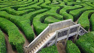 Eine Brücke in einem grün bewachsenen Labyrinth