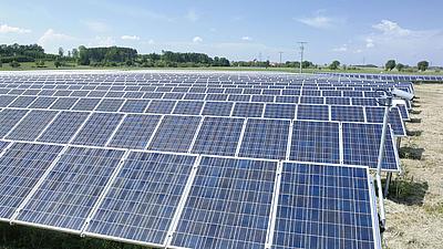 Blick über ein Feld auf dem eine Solaranlage installiert wurde. Im Hintergrund sind Büsche, Bäume und Felder zu sehen.