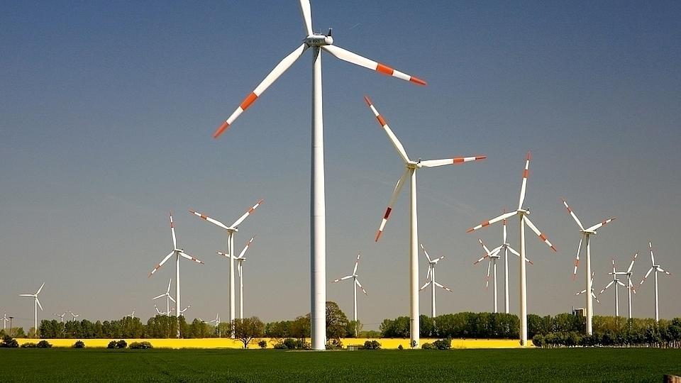 Eine Windradanlage mit vielen Windrädern, die auf mehreren Feldern verteilt sind.
