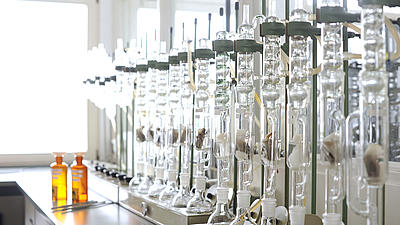 In einem Labor stehen mehrere Reagenzgläser in einer Versuchsreihe.