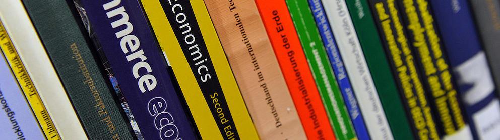 Nahaufnahme von verschiedenen nebeneinander stehenden Bücherrücken in einem Regalteil.